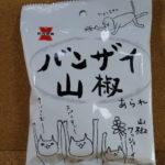 今回のおやつ:岩塚製菓の「バンザイ山椒あられ」を食べる!